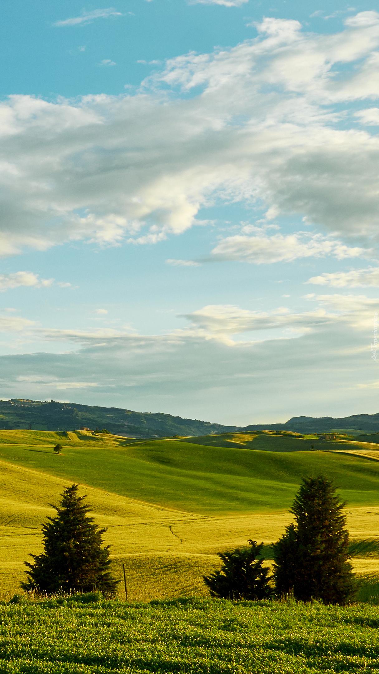 Toskańskie wzgórza i łąki