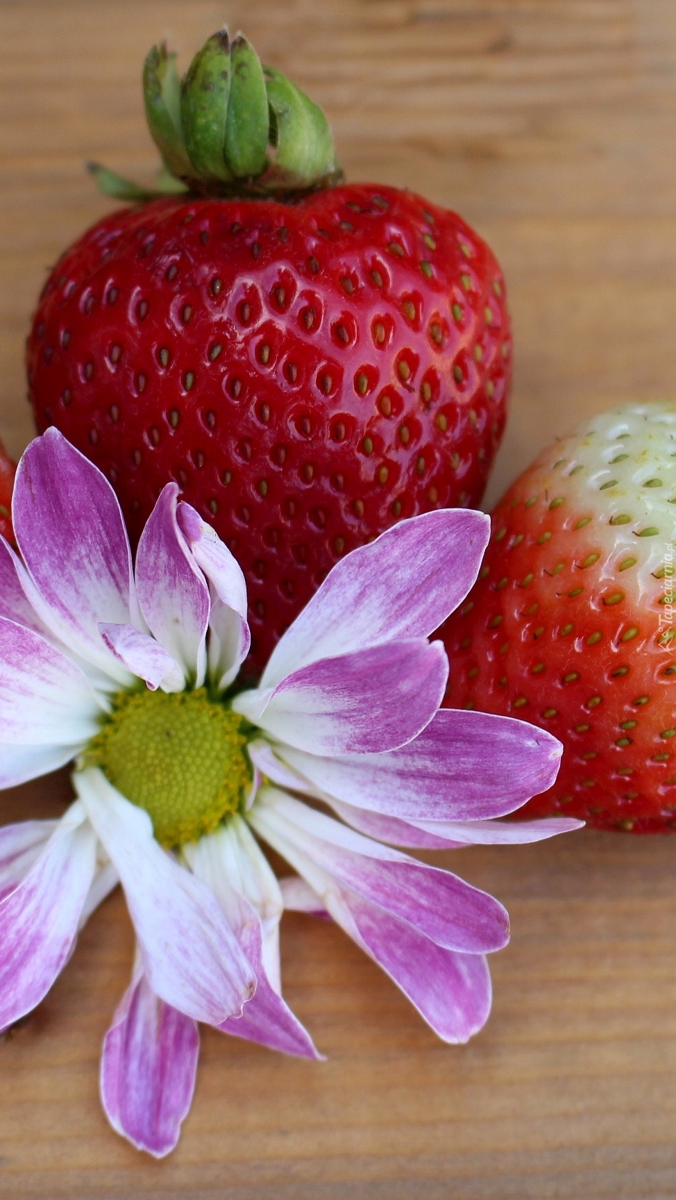 Truskawki z kwiatkiem
