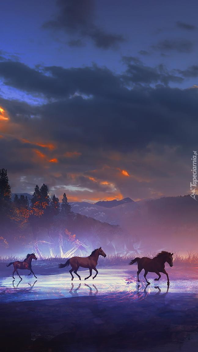 Trzy konie galopujące przez rzekę