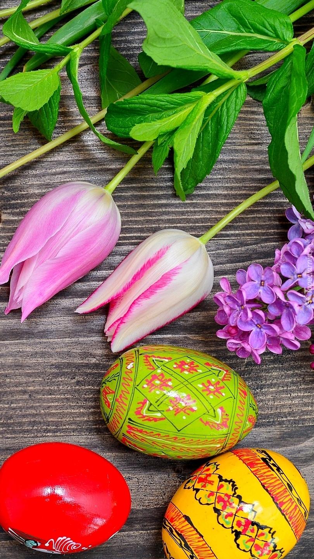 Trzy pisanki obok tulipanów