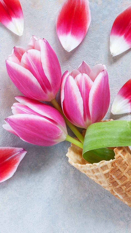 Trzy tulipany w rożku