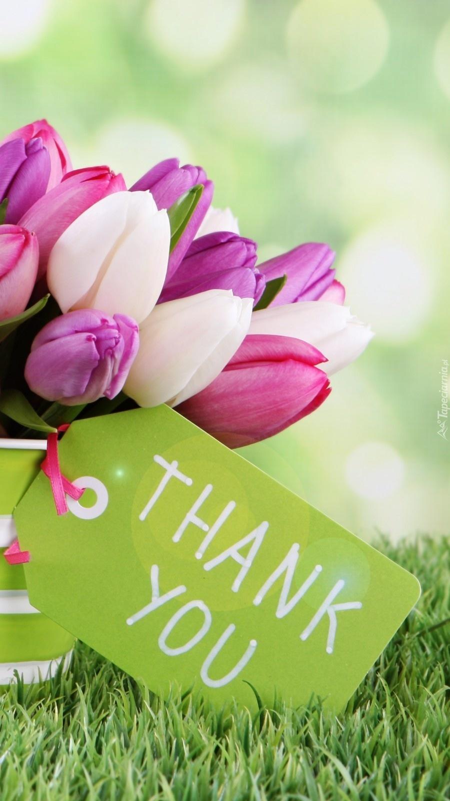 Tulipanowe podziękowanie
