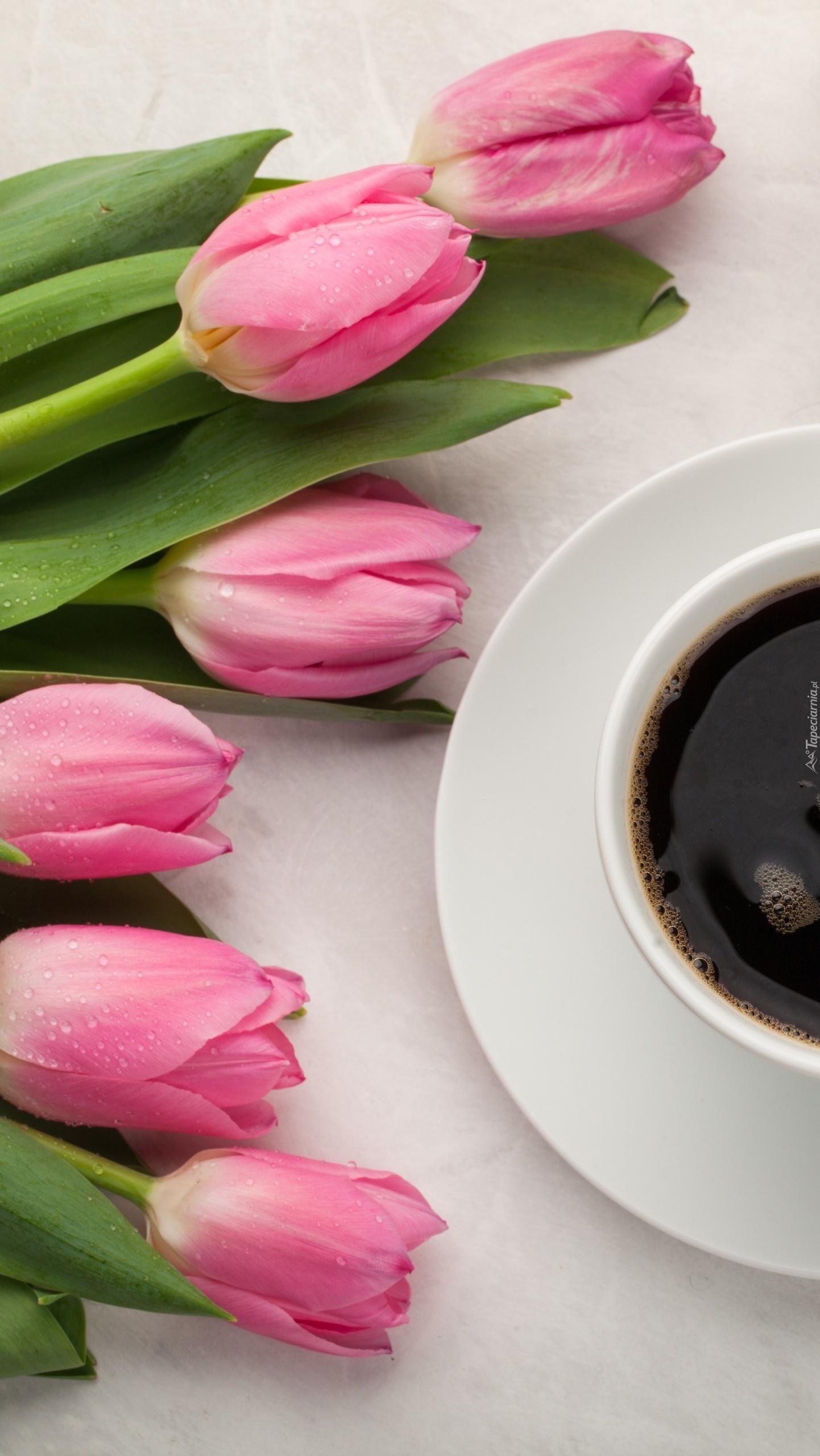 Tulipany i kawa