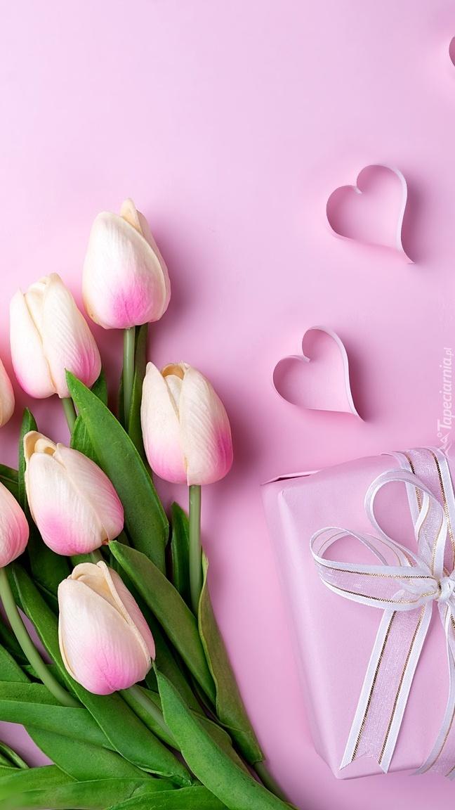 Tulipany i prezent na różowym tle