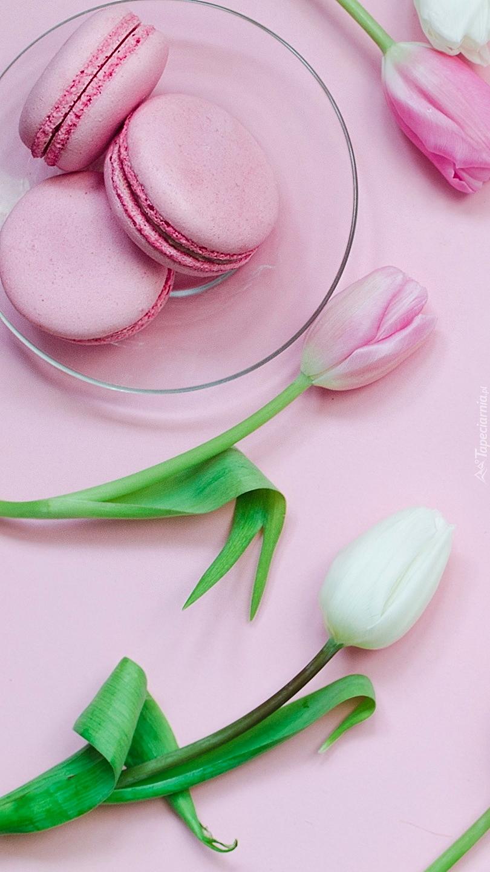 Tulipany obok makaroników