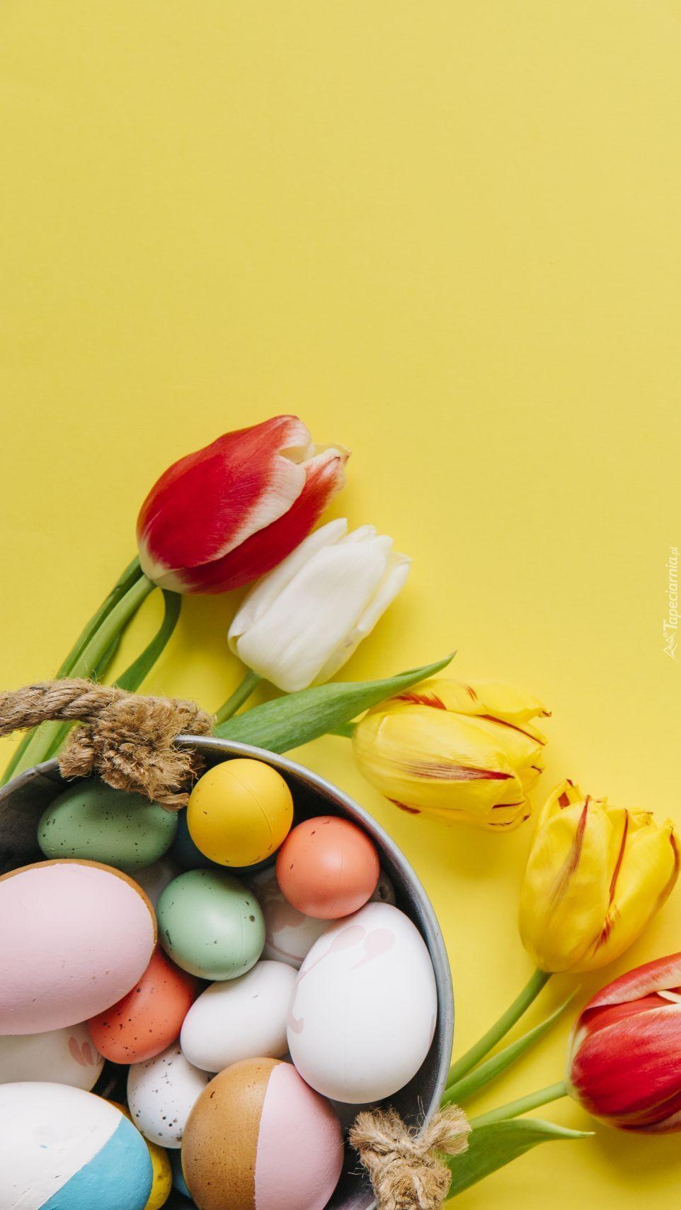 Tulipany obok pisanek w wiaderku