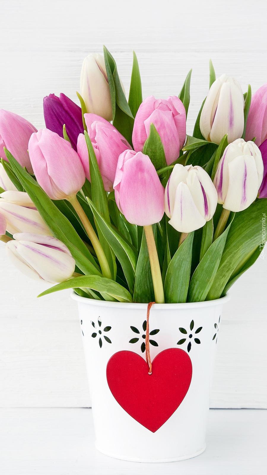 Tulipany w doniczce z serduszkiem