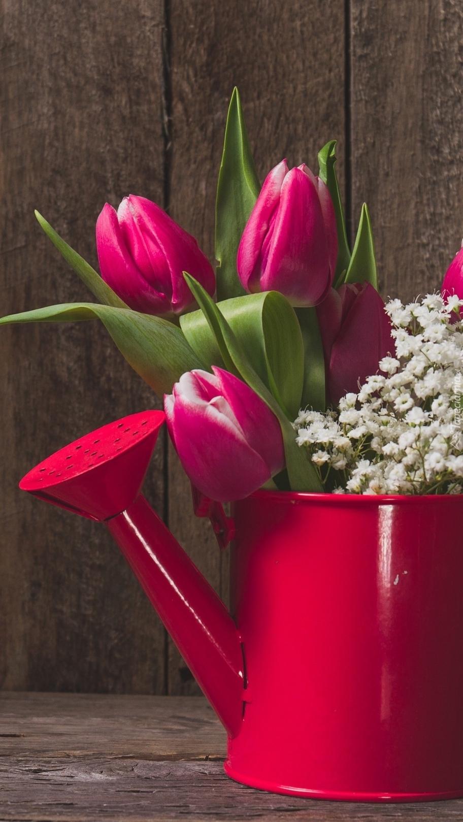 Tulipany w konewce
