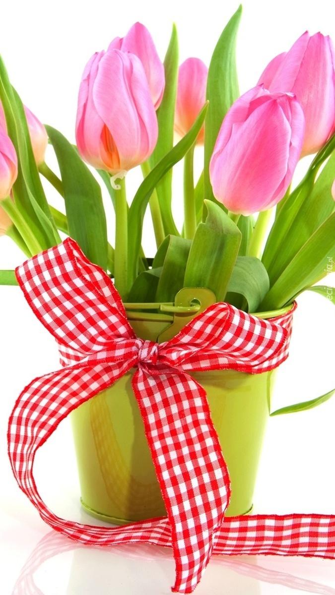 Tulipany w wiaderku