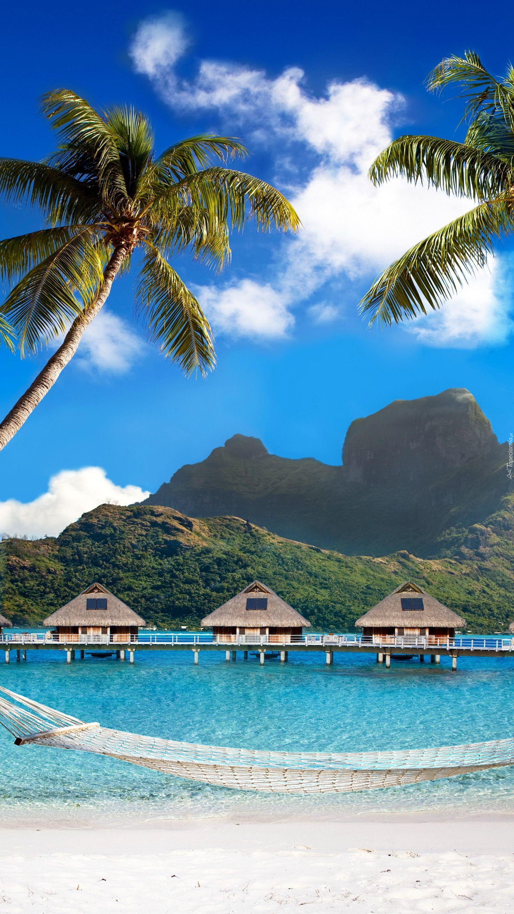 Udane wakacje w tropikach
