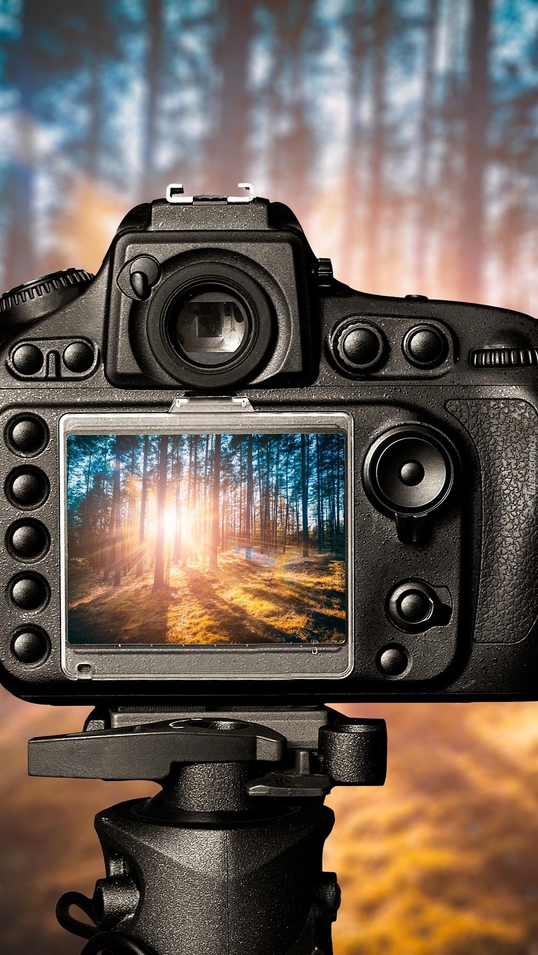 Ujęcie w kamerze
