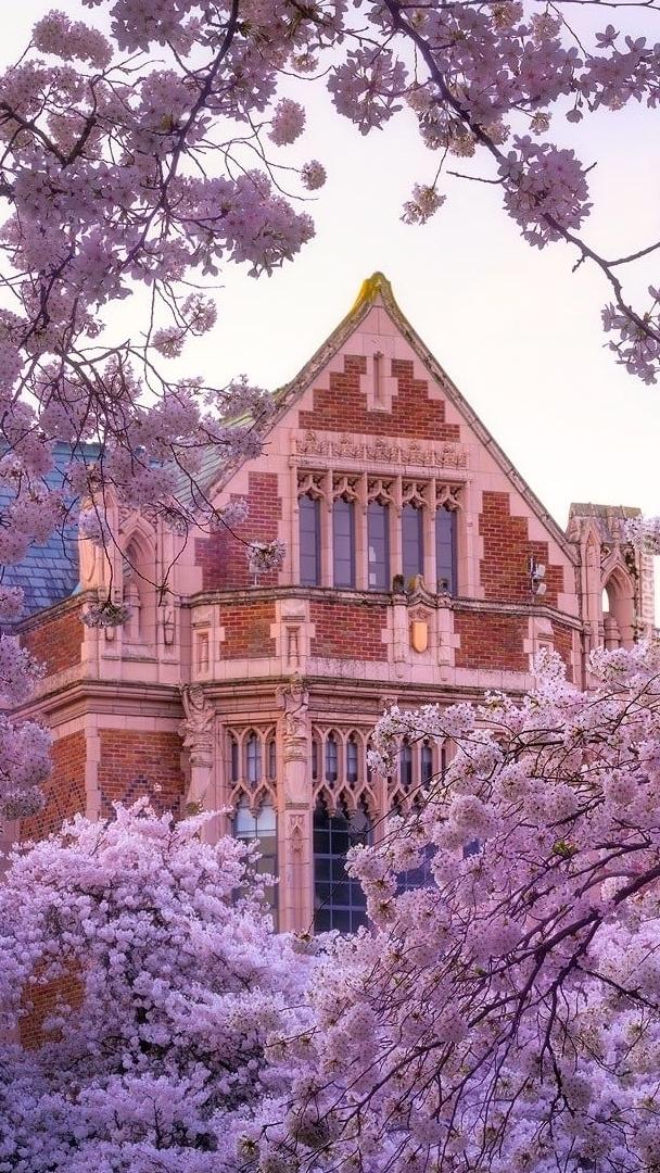 Uniwersytet Quad w Waszyngtonie