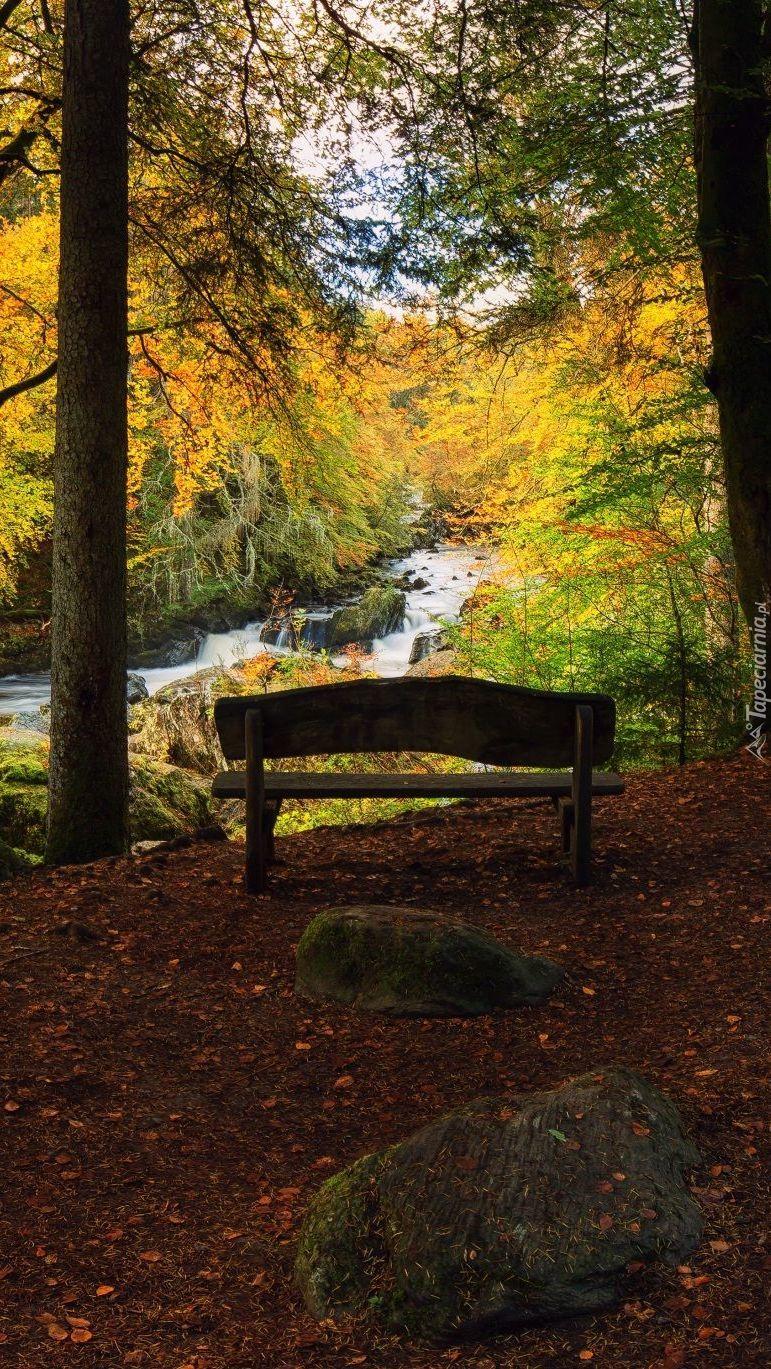 Usiądźmy na ławeczce