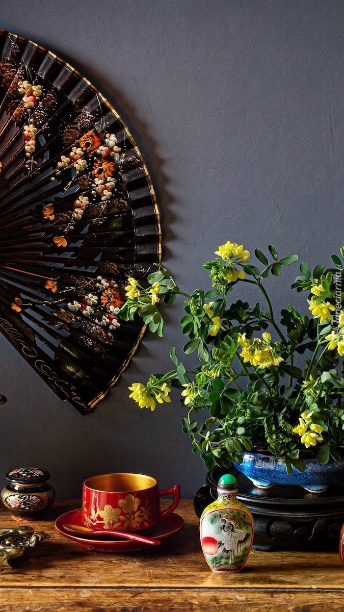 Wachlarz na ścianie obok kwiatów cieciorki