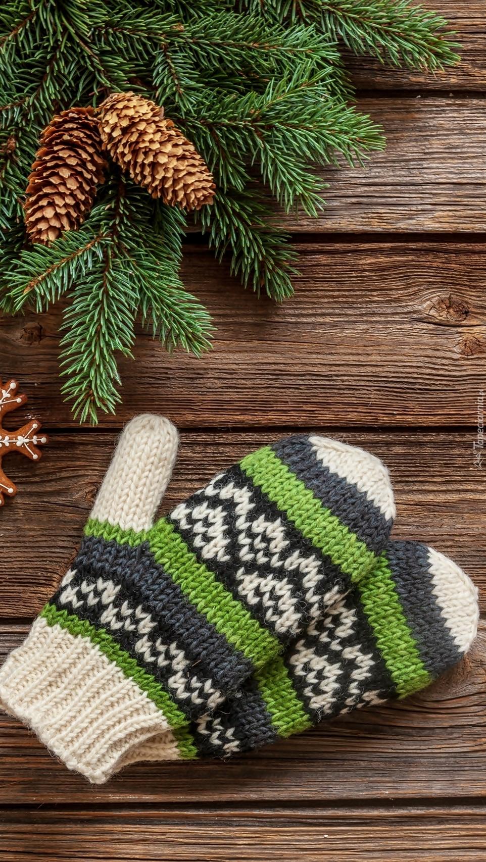 Wełniane rękawiczki obok gałązek