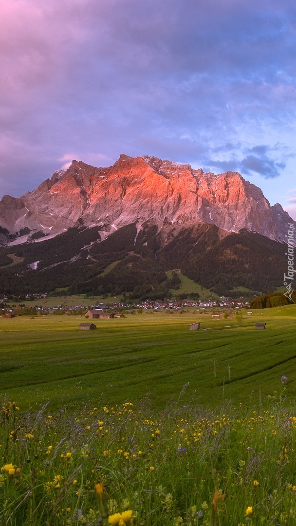 Widok z łąki na rozświetlone góry