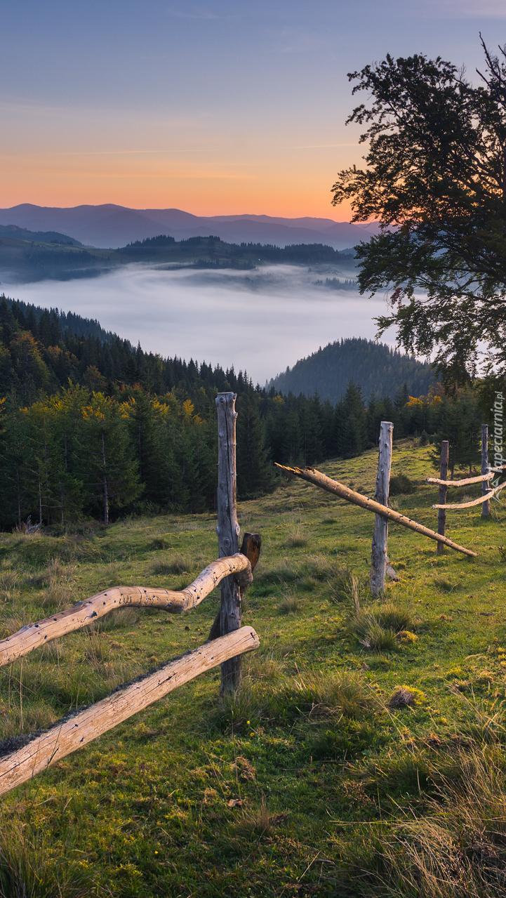 Widok z łąki na zamgloną dolinę