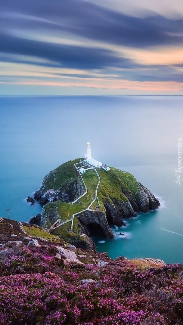 Widok z wrzosowego wzgórza na latarnię morską