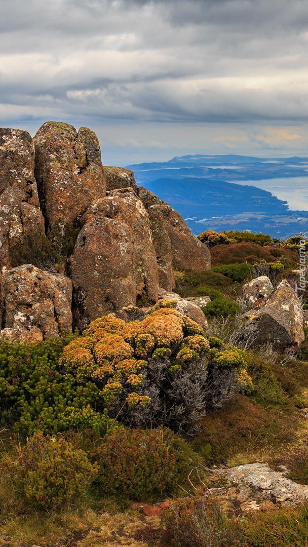 Widok ze szczytu Mount Wellington