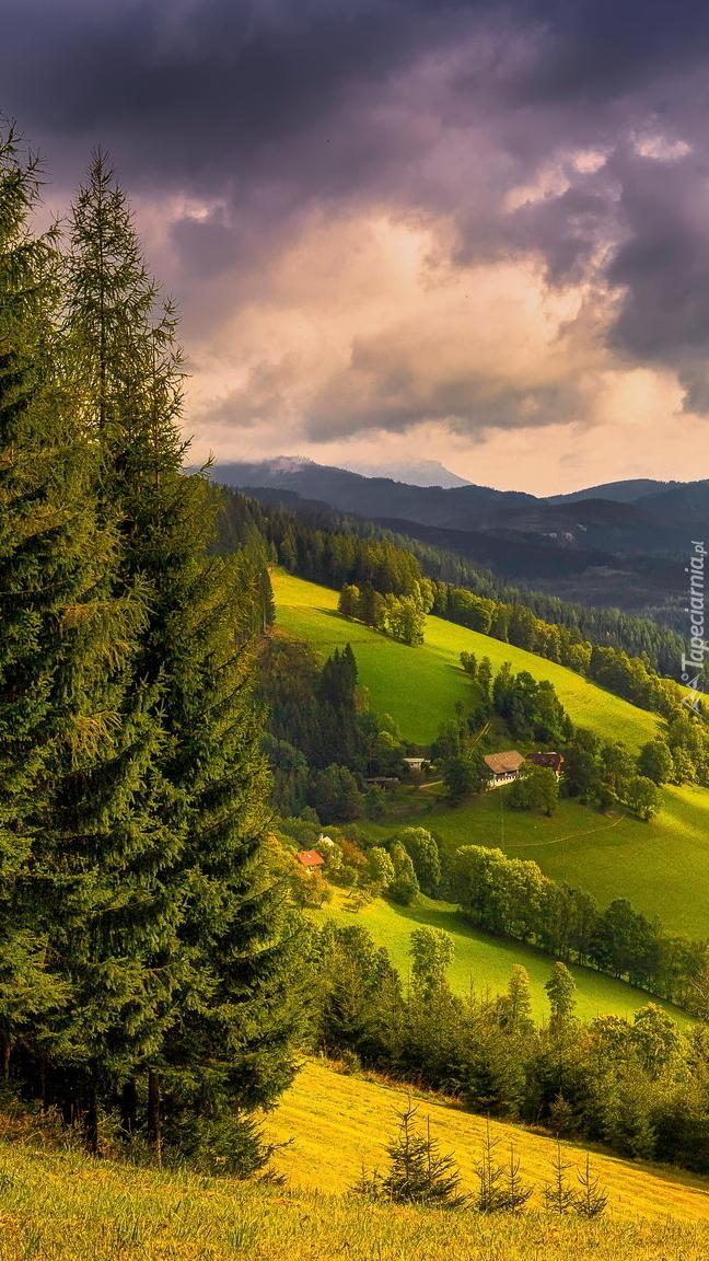Widok ze wzgórza na dolinę