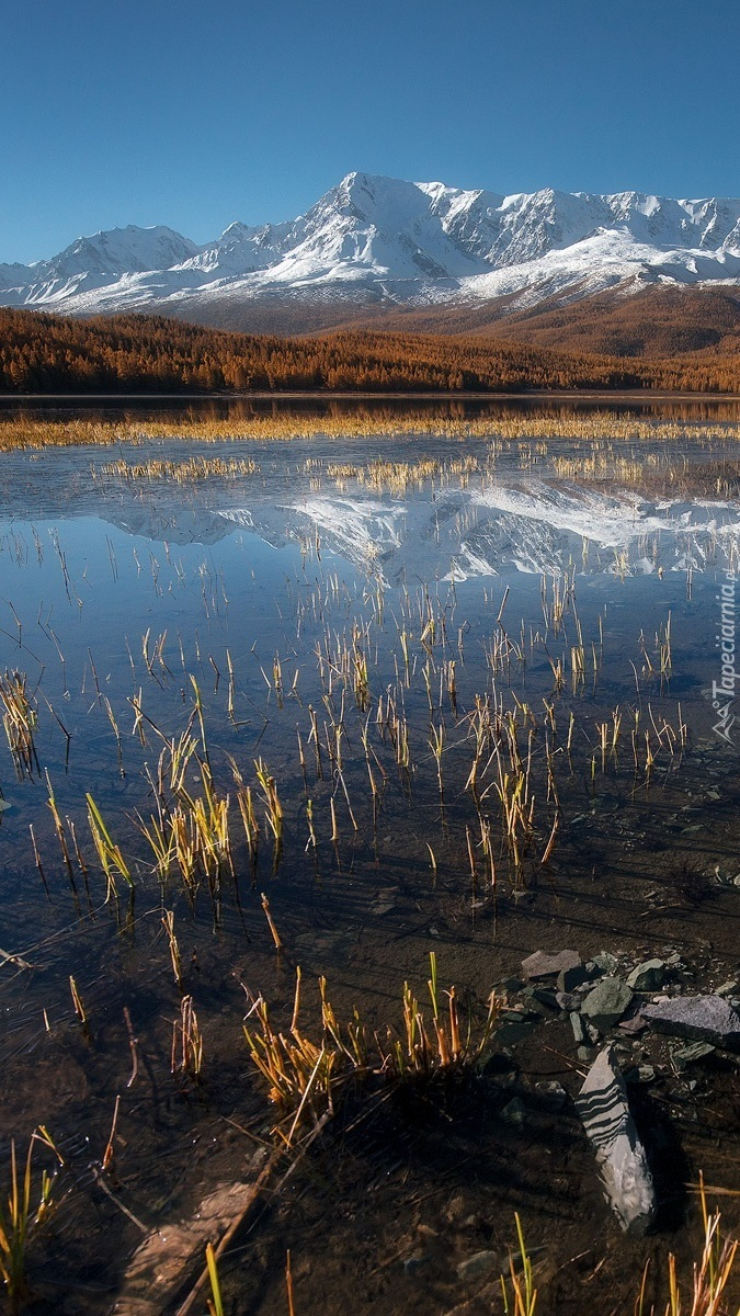 Widok znad jeziora na ośnieżone góry
