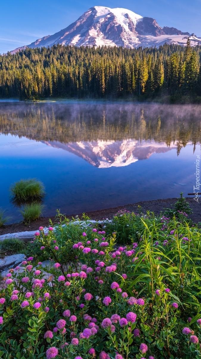 Widok znad jeziora Reflection Lake na Mount Rainier