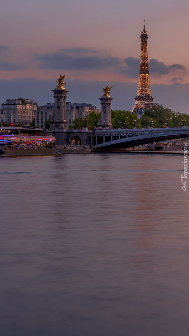 Wieża Eiffla i most Aleksandra III