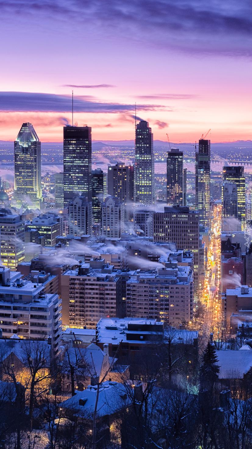 Wieżowce Montrealu
