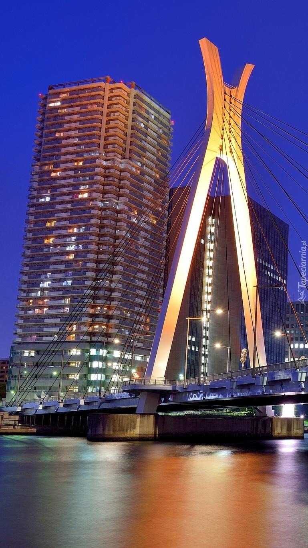 Wieżowce nad rzeką w Tokio
