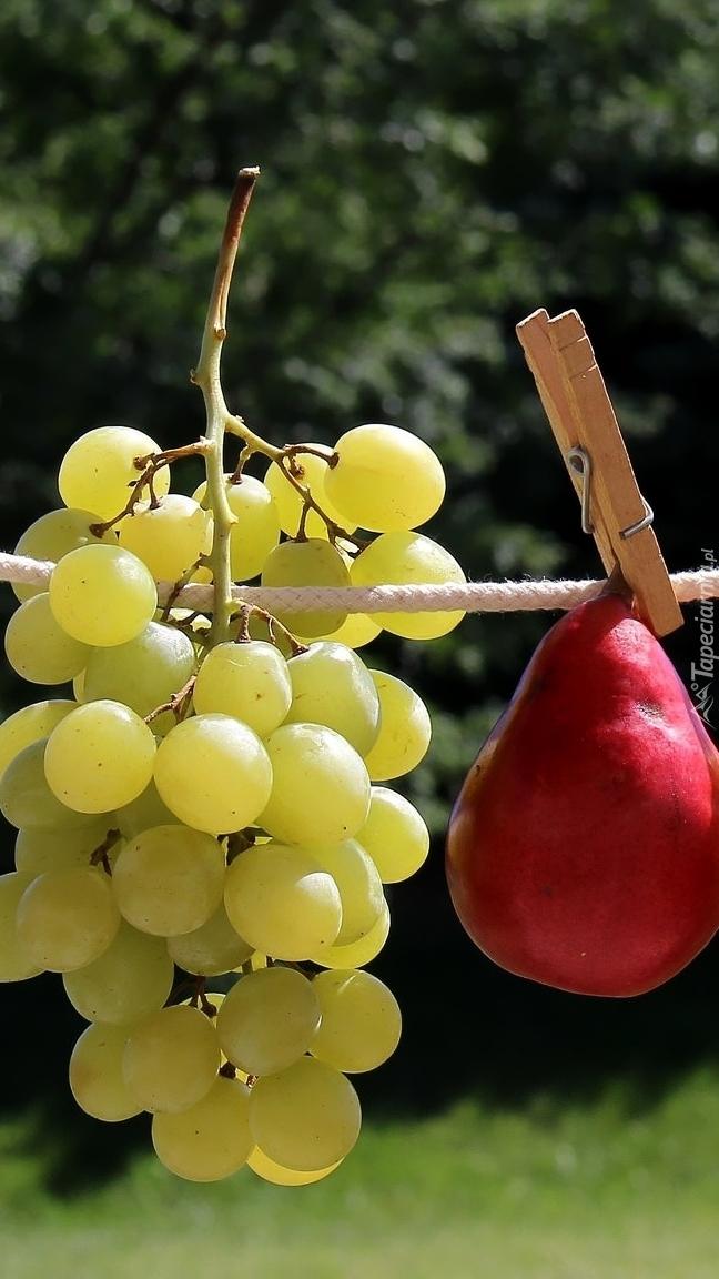 Winigrona i gruszka na sznurku
