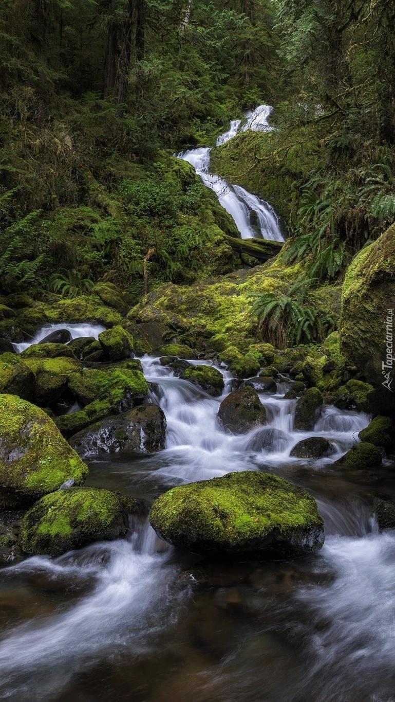 Wodospad Bunch Falls