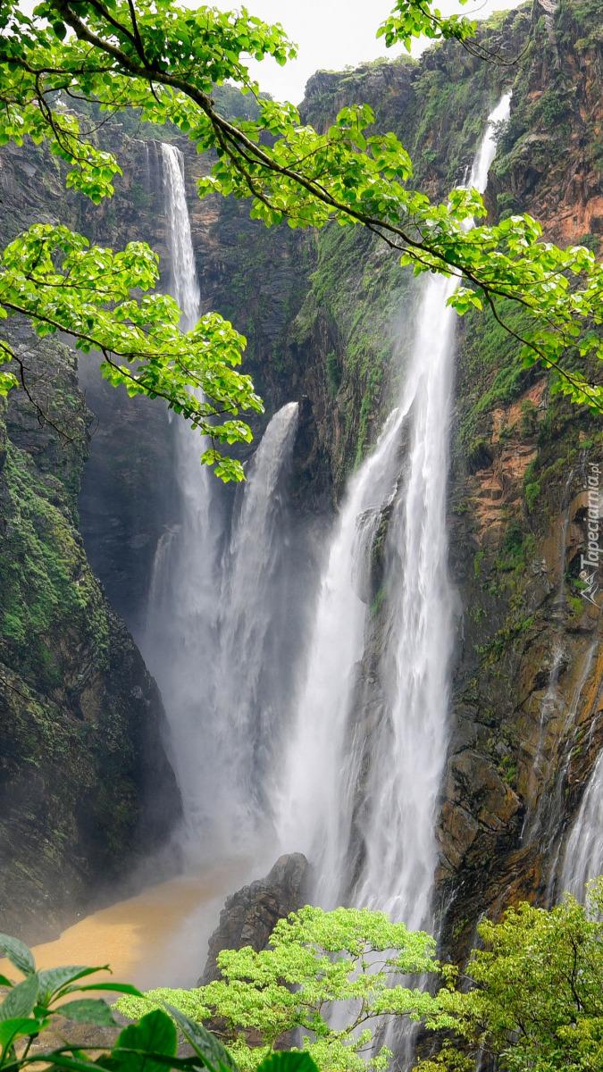 Wodospad Dźog w Indiach