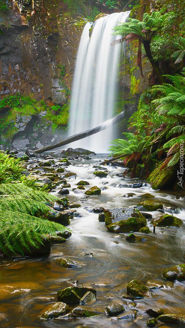 Wodospad Hopetoun Falls