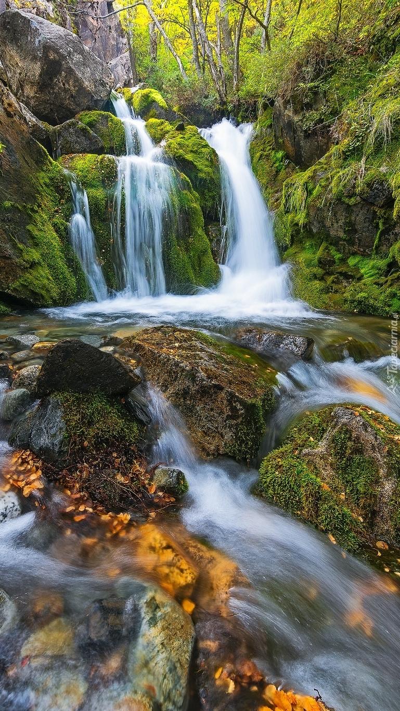 Wodospad i omszałe kamienie