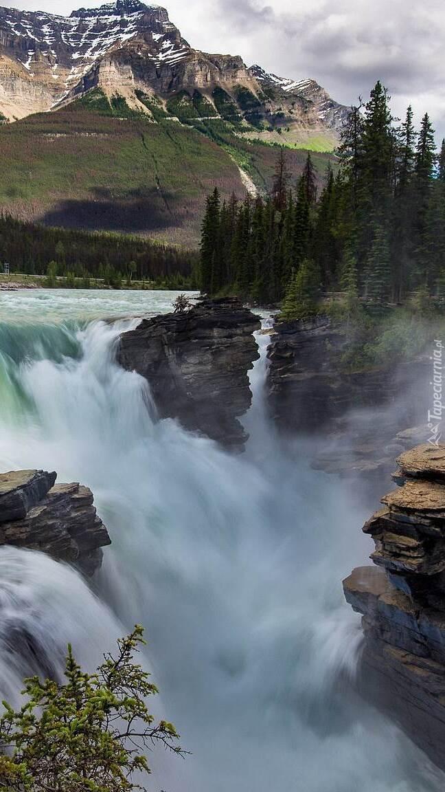 Wodospad i rzeka Athabasca w Parku Narodowym Jasper