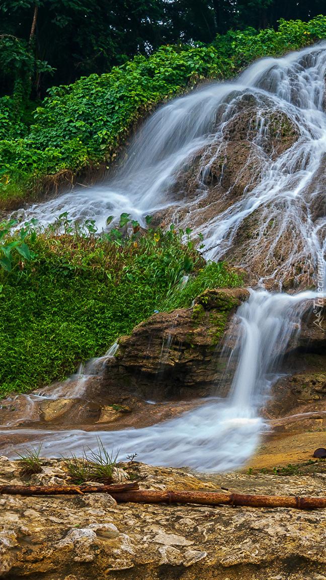 Wodospad i zielona roślinność