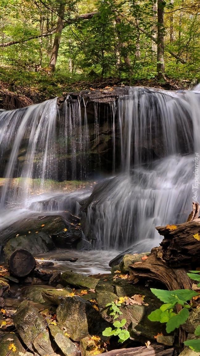 Wodospad Lower Tews