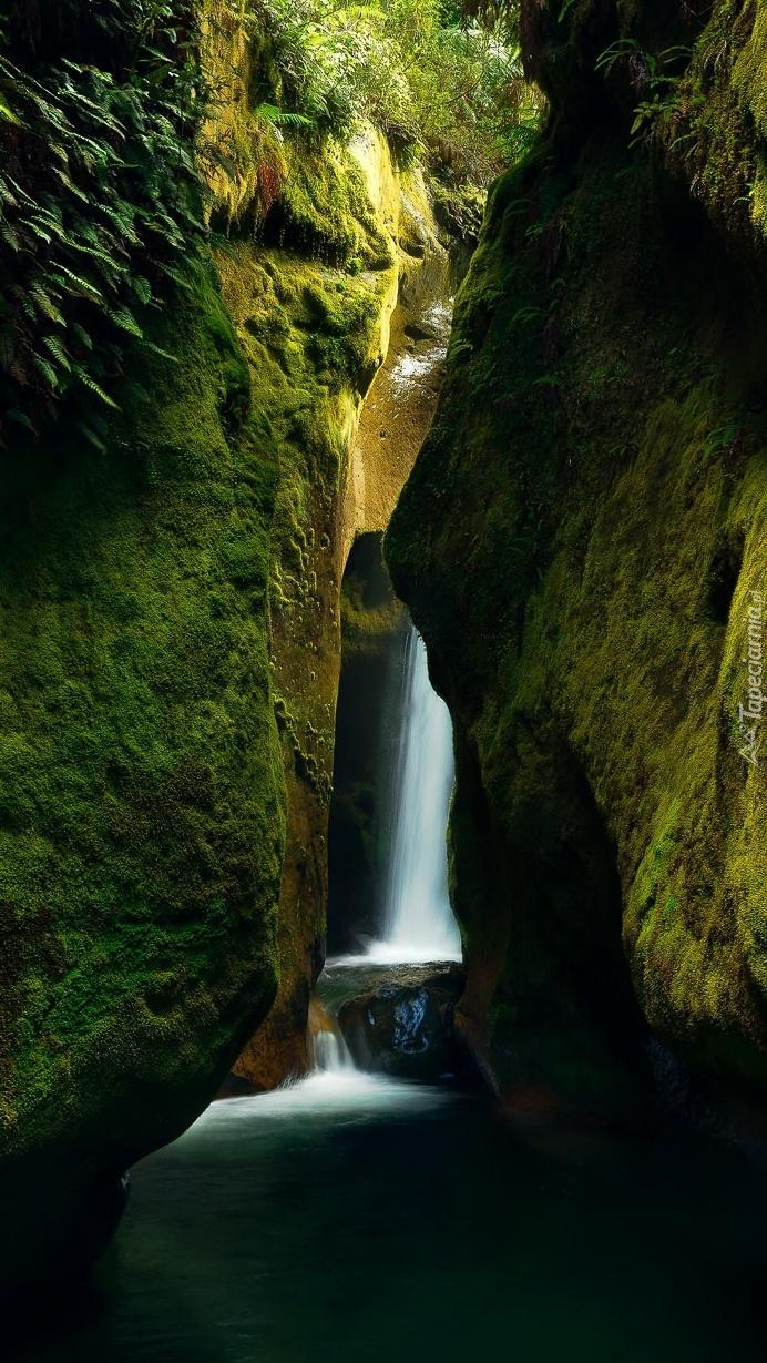 Wodospad między omszałymi skałami