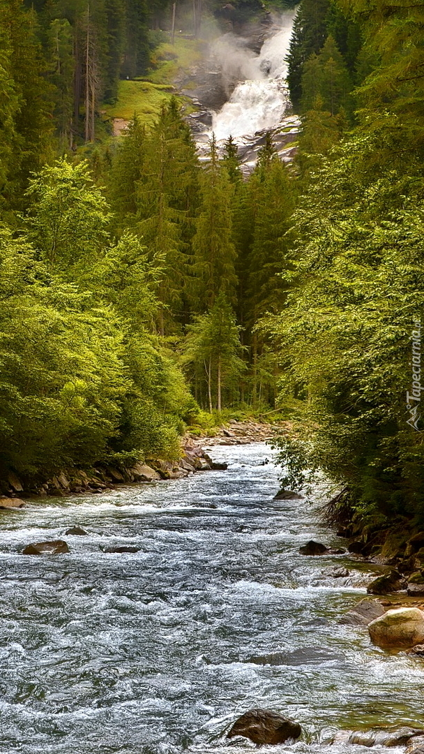 Wodospad na leśnej rzece