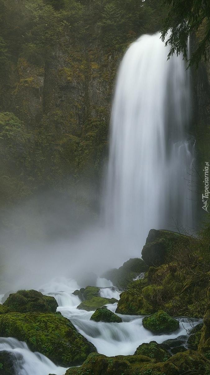 Wodospad na omszałych skałach