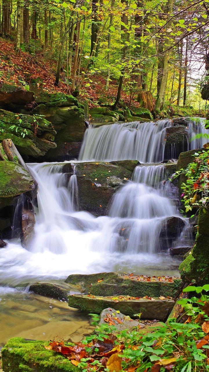 Wodospad na omszonych skałach