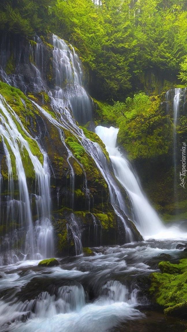 Wodospad Panther Creek Falls