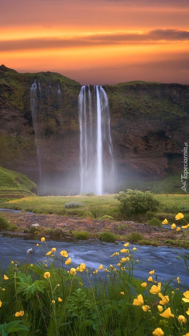 Wodospad Seljalandsfoss i rzeka Seljalandsa w Islandii
