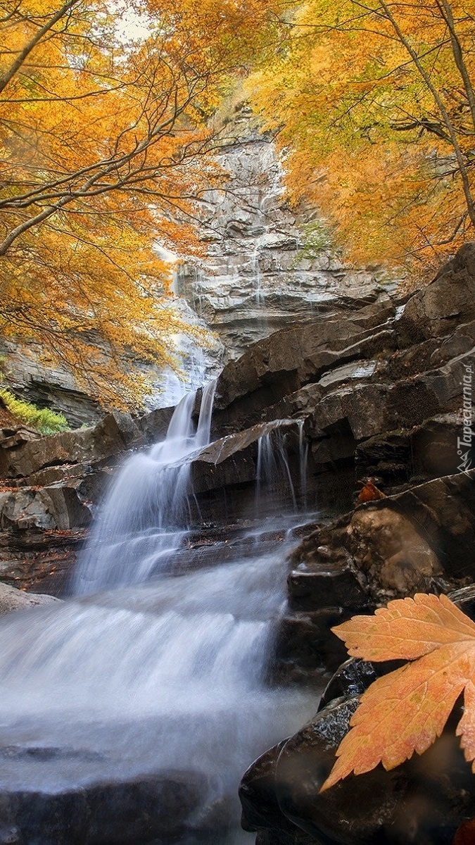 Wodospad w jesiennym lesie