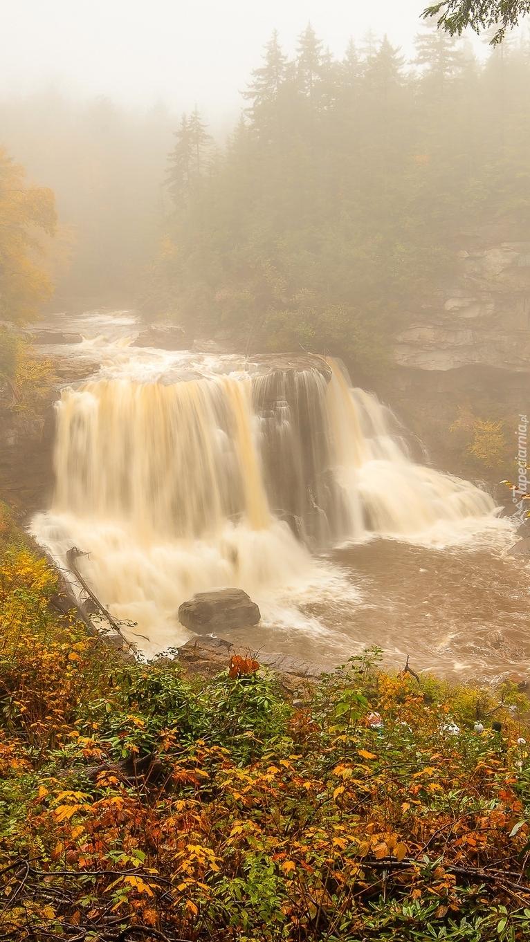 Wodospad w zamglonym lesie