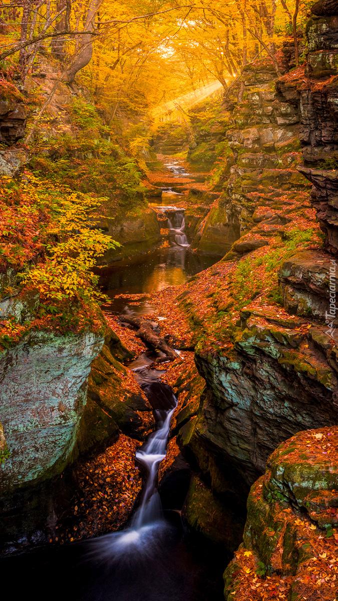 Wodospad wśród drzew i skał w barwach jesieni