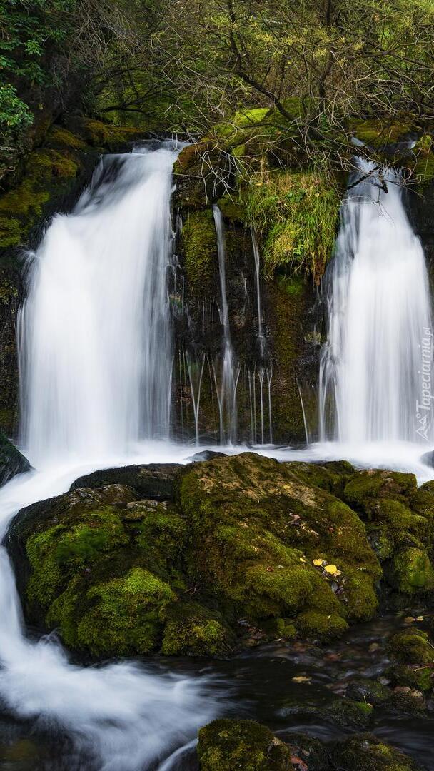 Wodospady i skały na rzece Bastareny