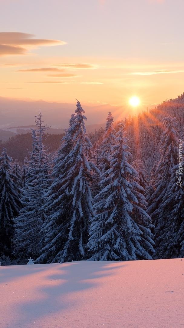 Wschód słońca nad Gorganami