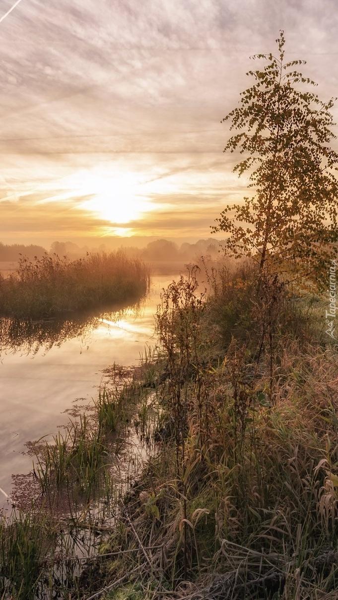 Wschód słońca nad zamglona rzeką