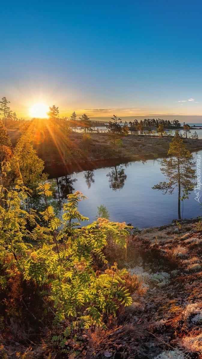 Wschodzące słońce nad jeziorem